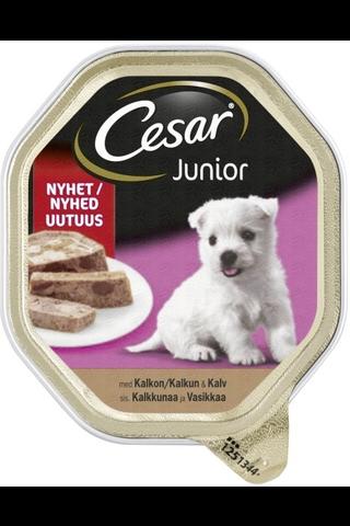Cesar Junior Kalkkunaa & Vasikkaa 150g