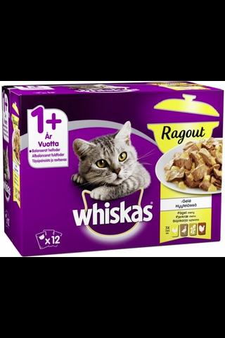 Whiskas 1+ Ragout Siipikarjalajitelma hyytelössä...