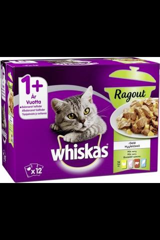 Whiskas 1+ Ragout Suosikit lajitelma hyytelössä...