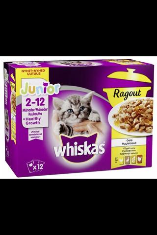 Whiskas Junior Ragout Siipikarjalajitelma...