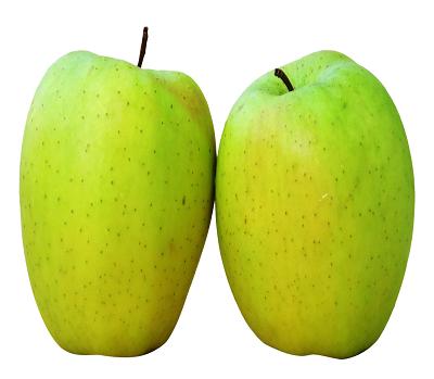 Omena Golden