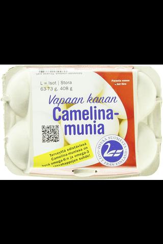 Satamuna Vapaan kanan Camelina Pesämuna...