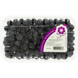 Berry World 300g pensasmustikka