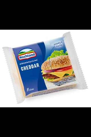 Hochland Cheddar sulatejuustoviipaleet 200...